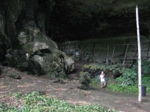 Hunting for birds nests in Niah caves