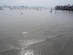 Penang City Marina