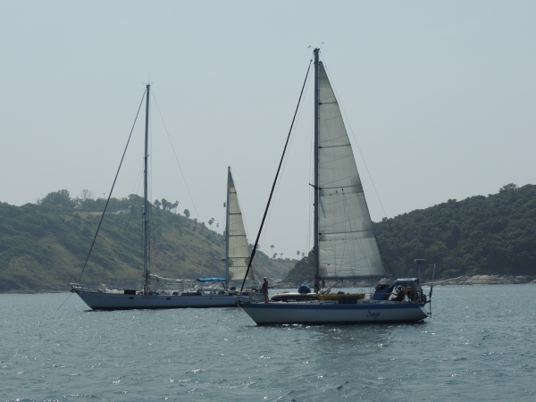 Photo of Sage and Darwin Sound by M. Reck onboard SY Manana