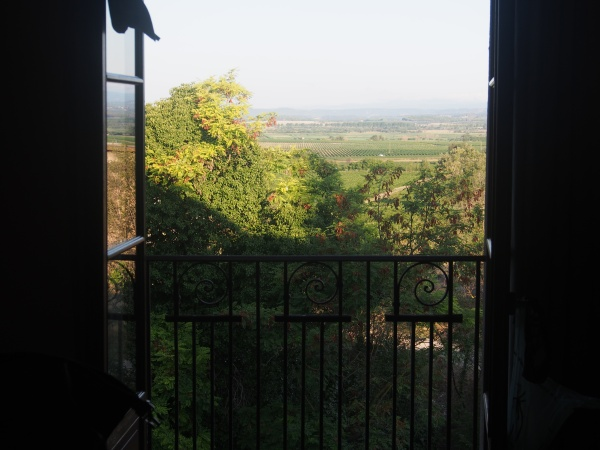View over the local vineyards