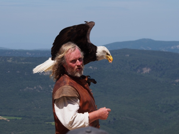Peyrerpertuse - the falconer
