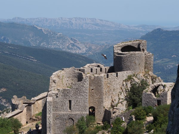 Peyrepertuse - the eagle has escaped and flying free