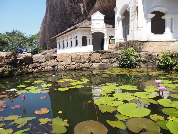 Cave upon cave built under the protection of the rock houses hundreds of Buddhas