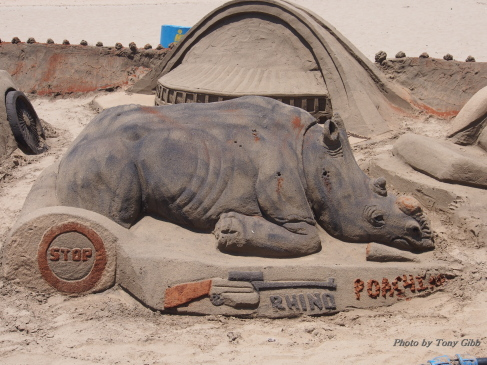 Seen on the beach in Durban