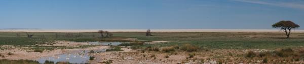 Etosha salt pan panorama