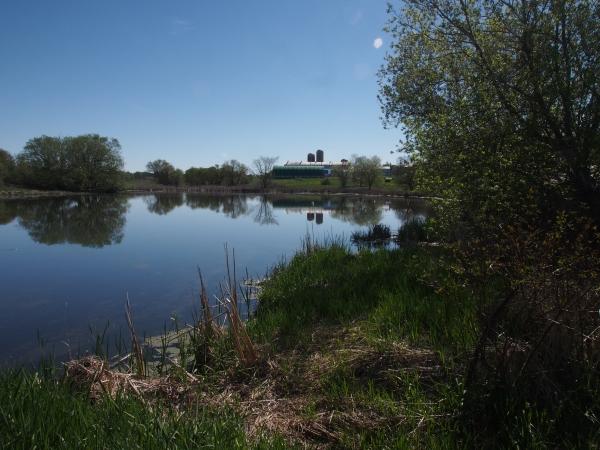 A backwater
