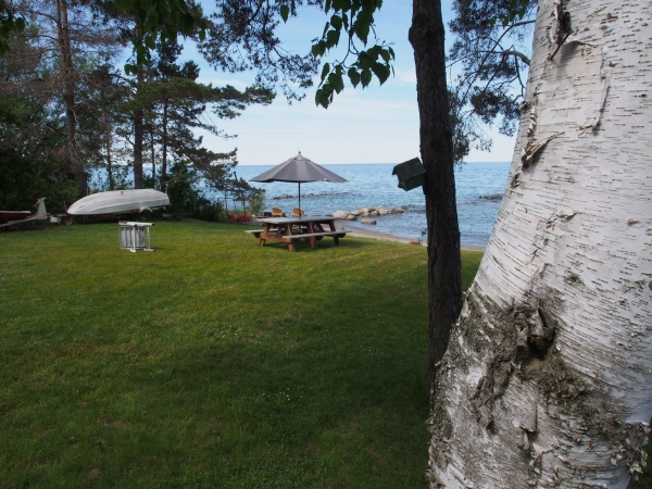 Collingwood, on the banks of the Georgian Bay, is cottage country